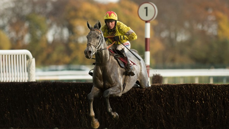 Politologue: made a winning start to his chasing career at Haydock
