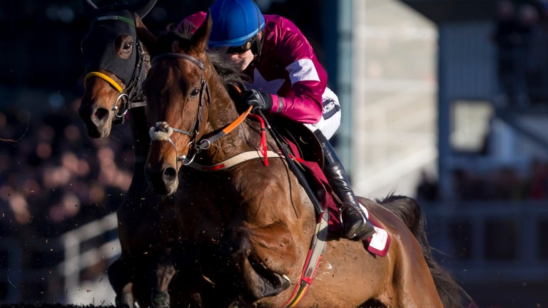 Valseur Lido: Gold Cup absentee along with Don Cossack and Coneygree