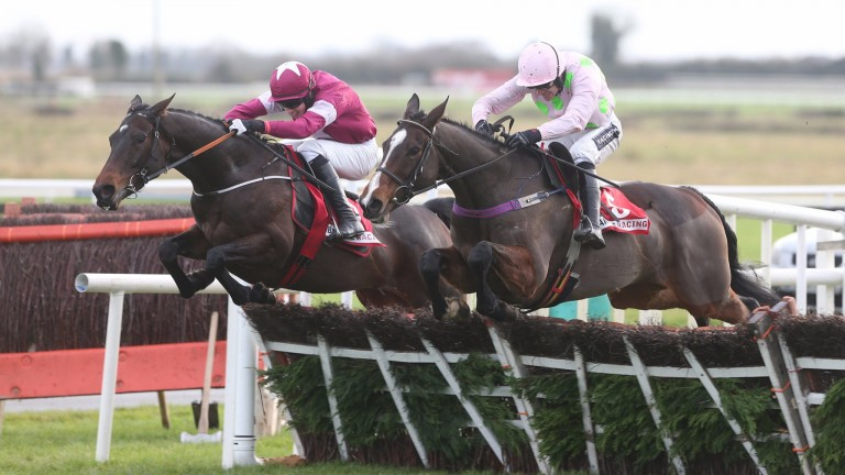 Apple's Jade (far side): will press her Cheltenham Festival claims at Punchestown