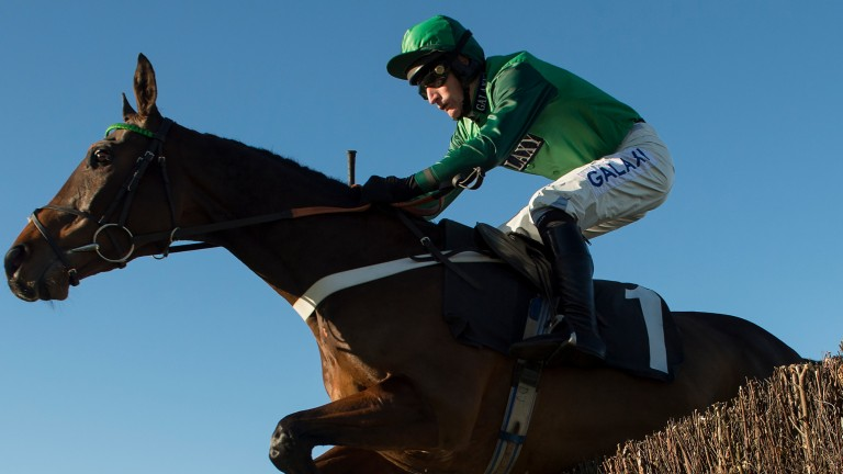 Top Notch: high-class hurdler has taken well to fences