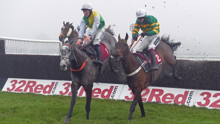 Buveur D'Air (right): had been due to run at Haydock today