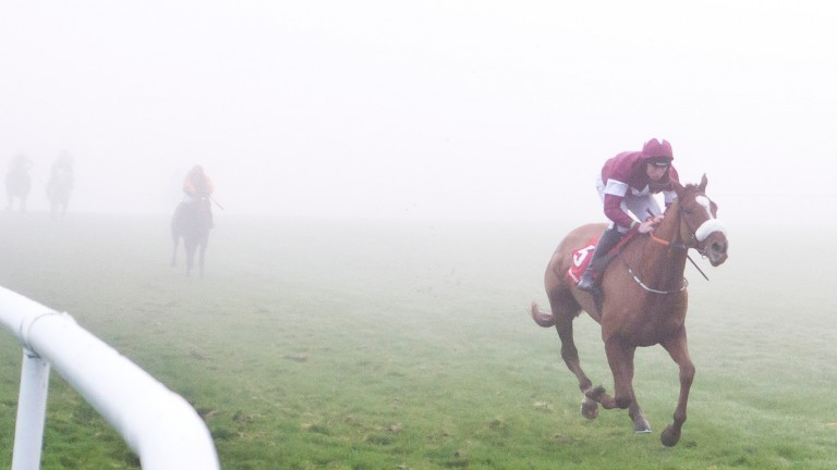 Samcro emerges as a clear winner from the fog at Punchestown last month
