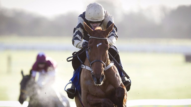 Yorkhill: smooth victory under Ruby Walsh