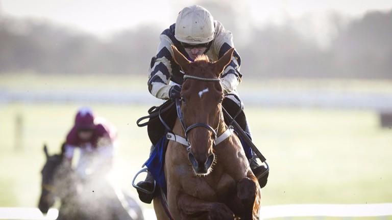 Yorkhill: Is last year's Neptune winner vulnerable over fences?