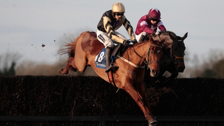 Yorkhill: As short as 6-5 for JLT Novices' Chase