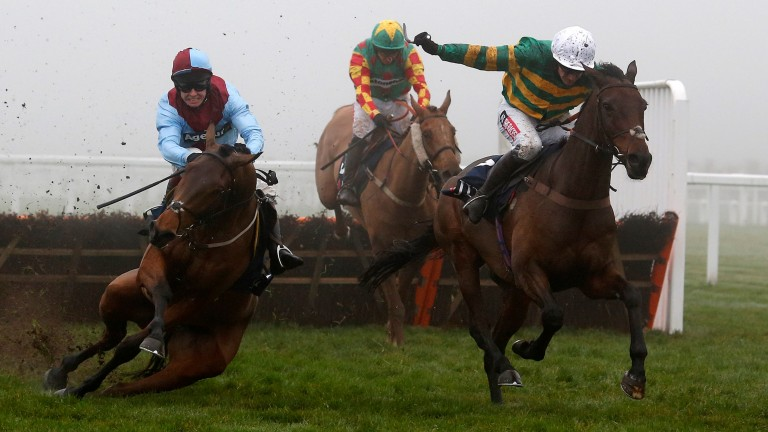 Ballyoptic (Richard Johnson) slips on landing over the last in Saturday's Long Walk Hurdle, leaving Unowhatimeanharry clear of Lil Rockerfeller