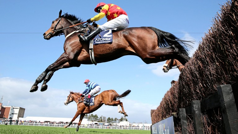Eduard in full flight en route to a win at Ayr in 2014
