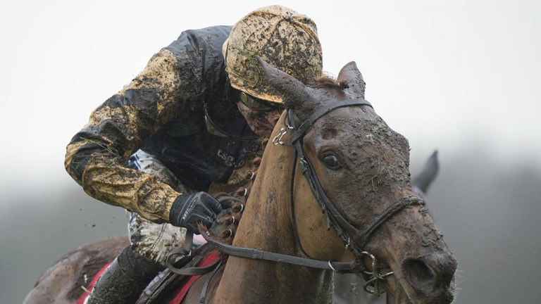 Hard work: Yorkhill and Ruby Walsh brave the elements on the way to Grade 1 success in the Tolworth Hurdle at Sandown