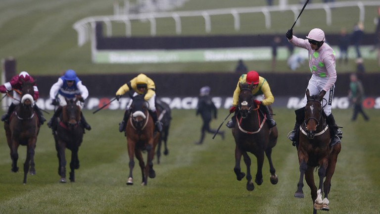 Douvan: pictured winning the Racing Post Arkle at the Cheltenham Festival