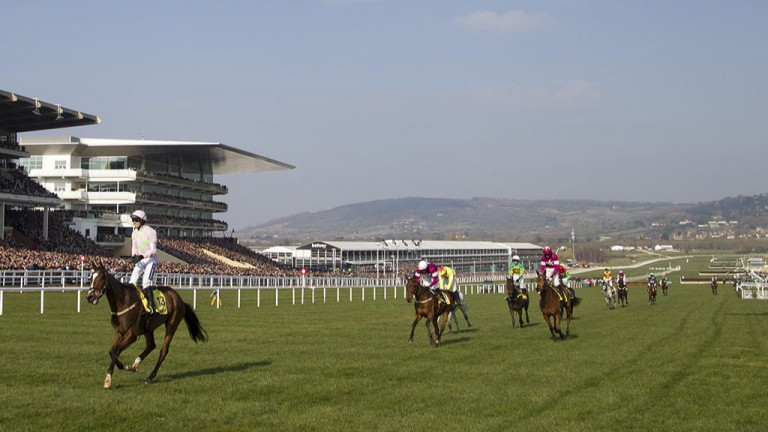 Class of his own: Vautour and Ruby Walsh saunter to victory in the Ryanair Chase