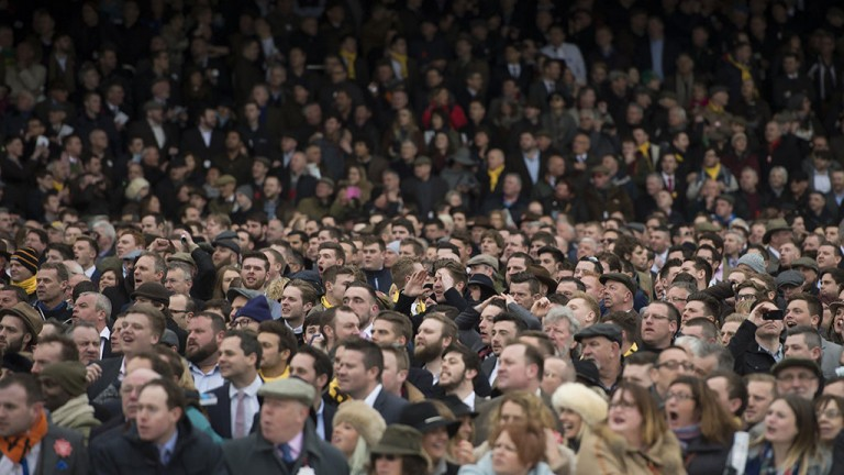 The crowds will be packed in to racecourses on Boxing Day