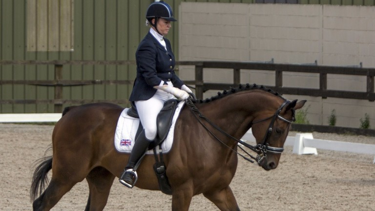 Namibian and Julie Frizzell take the fast track to success in para-dressage