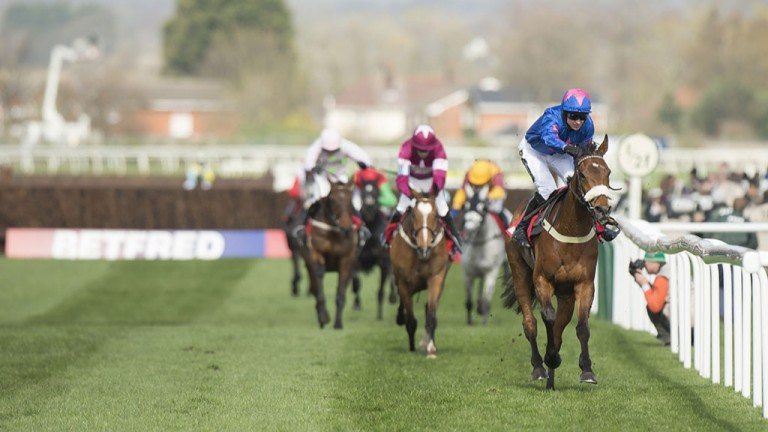 Cue the moment: after coming to grief in the Gold Cup, there was no stopping Cue Card at Aintree as he trounced his rivals in effortless style