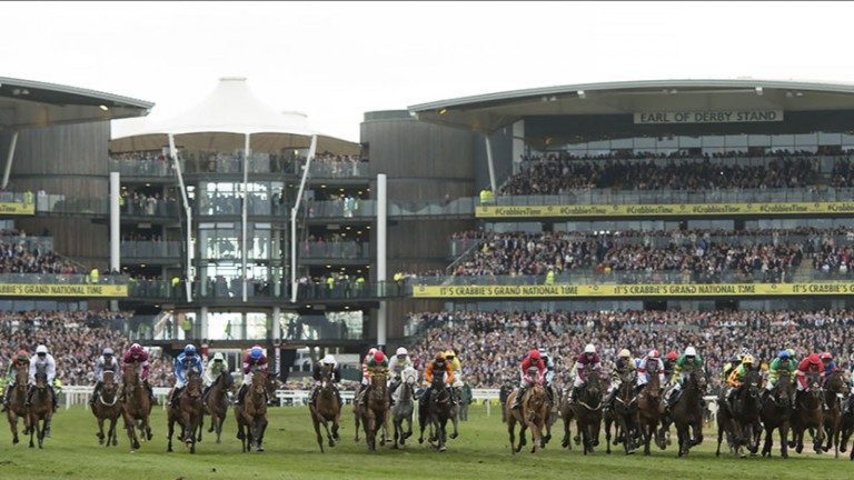 All in a row: the field in the Crabbies' Grand National set off on the marathon trip