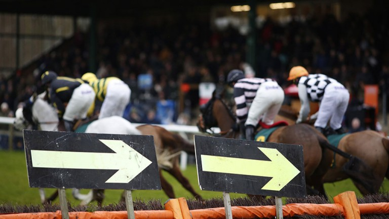 The only way is round it: runners bypass a hurdle in front of the stands during the opener at Fakenham
