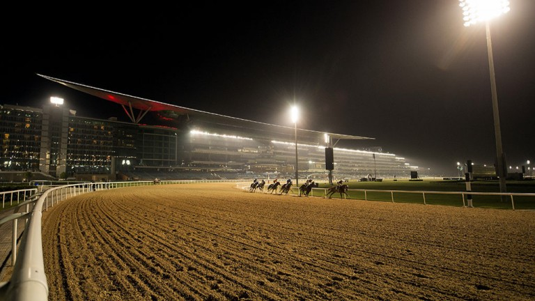 Racing at Meydan: a fantastic spectacle on World Cup night