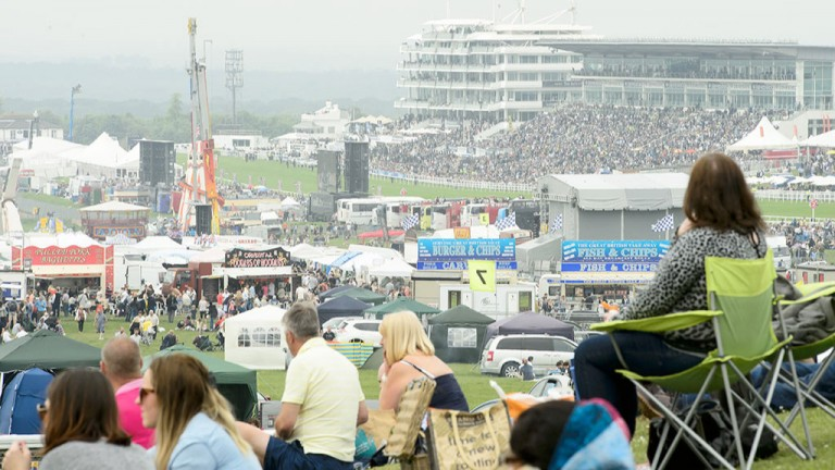 Vantage point: racegoers find the perfect spot at Epsom to see the whole of the action at the top of the hill
