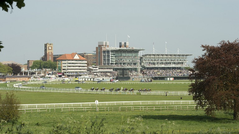 Some sight: a great view of York, with the runners heading out into the back straight in the concluding 2m handicap
