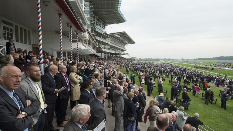 Crowded house: racegoers take in the 7f handicap at York in which Frankie Dettori made it three winners for the day when scoring aboard 9-2 favourite Castle Harbour