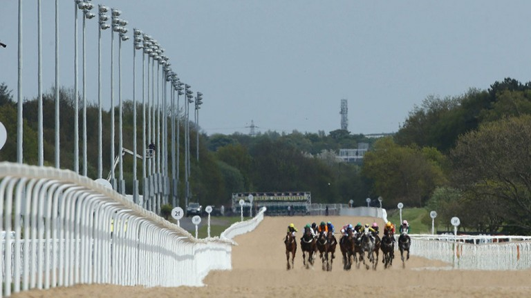 The straight mile: runners thunder up the long stretch at Newcastle