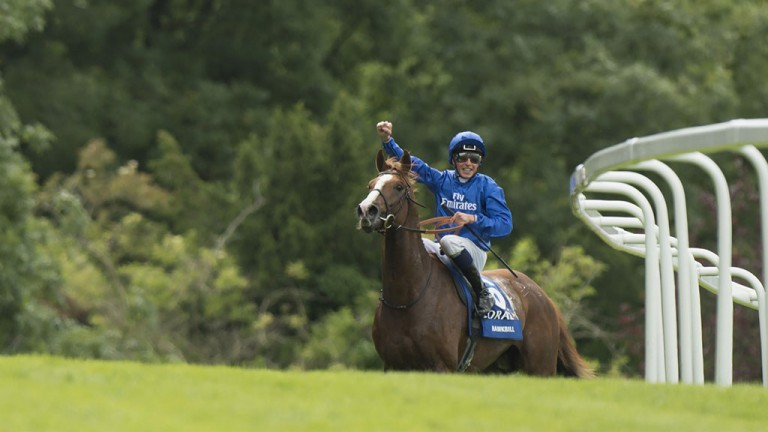 Glory days: Hawkbill's jockey William Buick shows his delight after winning the Eclipse at Sandown