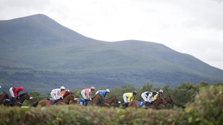 No finer sight: the glorious backdrop of the County Kerry countryside dominates the scene during the 2m4f handicap hurdle at Kilarney