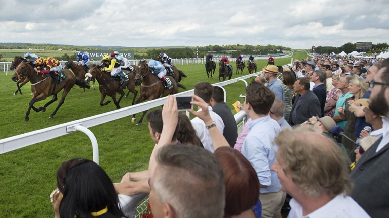 So close to the action: runners, headed by eventual winner Boom The Groom (checked silks), flash past the crowds in the 5f sprint at Glorious Goodwood