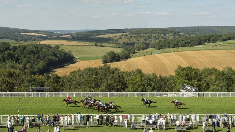 Stunning setting: the view across the Sussex Downs during Goodwood's 6f nursery, won by the Richard Hughes-trained Paco's Angel (red silks)