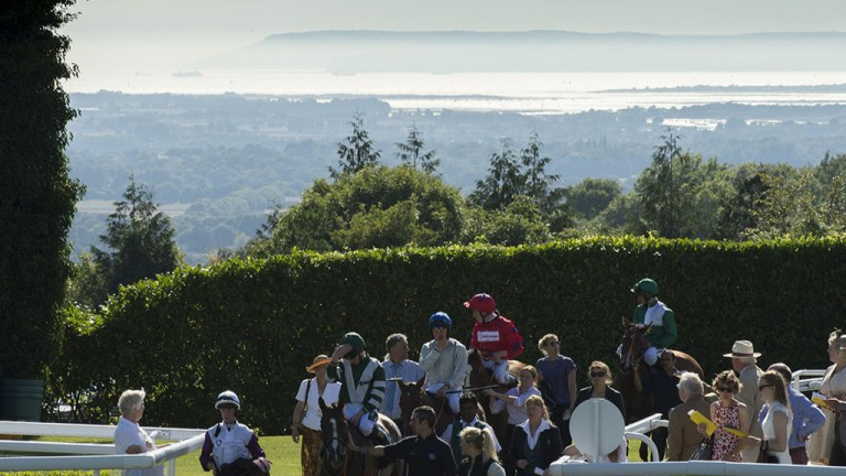 On the horizon: the Isle of Wight provides a glorious backdrop at Goodwood as runners return to the winner's enclosure after the 6f fillies' nursery