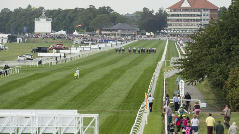 One lap to go: the field in the 2m½f handicap make their way past the stands with another circuit remaining