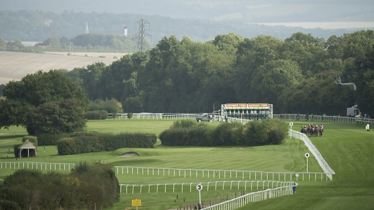 Rolling countryside: the field in the 6f handicap race away from the stalls at Salisbury