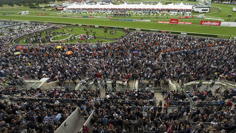 Bumper crowd: racegoers packed into Town Moor for the St Leger meeting at Doncaster