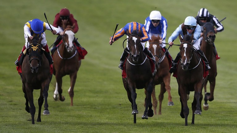 Only the Brave: Brave Anna (light blue) stuns stablemate Roly Poly and flying filly Lady Aurelia (left) to win the Cheveley Park Stakes at 25-1 at Newmarket