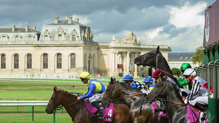 A picture postcard scene from Chantilly on day one of the Arc meeting as Post photographer Edward Whitaker captures the horses leaving the stalls for the Prix Chaudenay