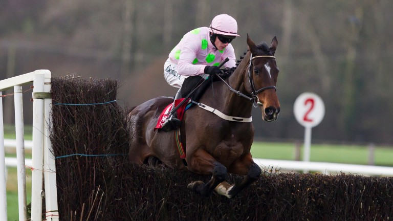 Douvan: lost his unbeaten record over fences in March