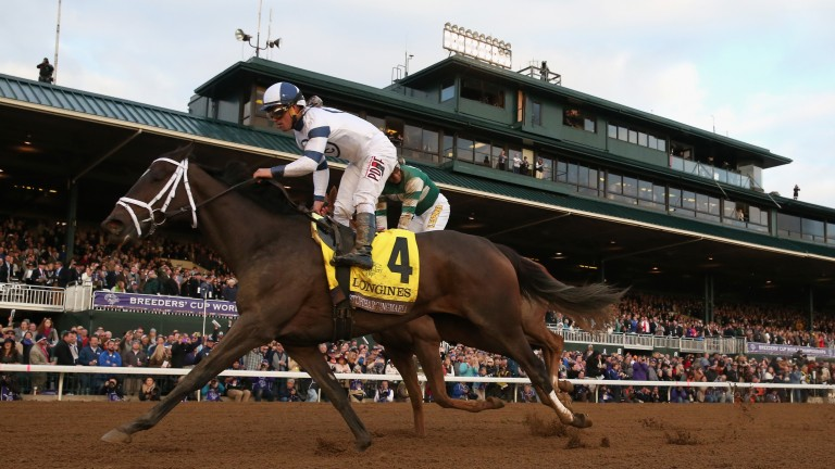 Stopchargingmaria (4): won the Breeders' Cup Distaff last year from Stellar Wind