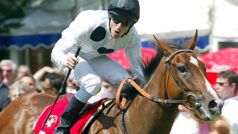 Tribute Act is related to Elite Racing Club's star mare Soviet Song (pictured)