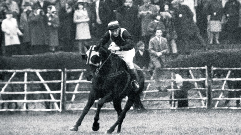 Foinavon and John Buckingham on their way to winning the 1967 Grand National