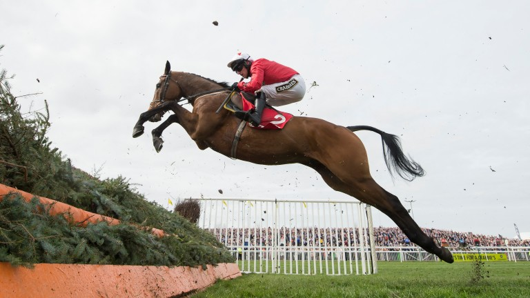 Blaklion: bids to defy topweight in the feature on day one of the Yorkshire Christmas meeting