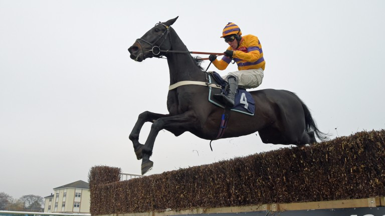 Gold Present : bids to supplement his impressive debut chasing win at Doncaster