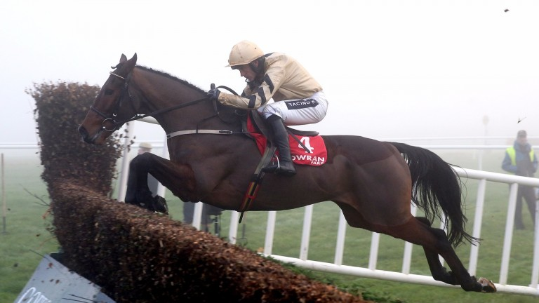 Bellshill: has won both starts over fences in fine style