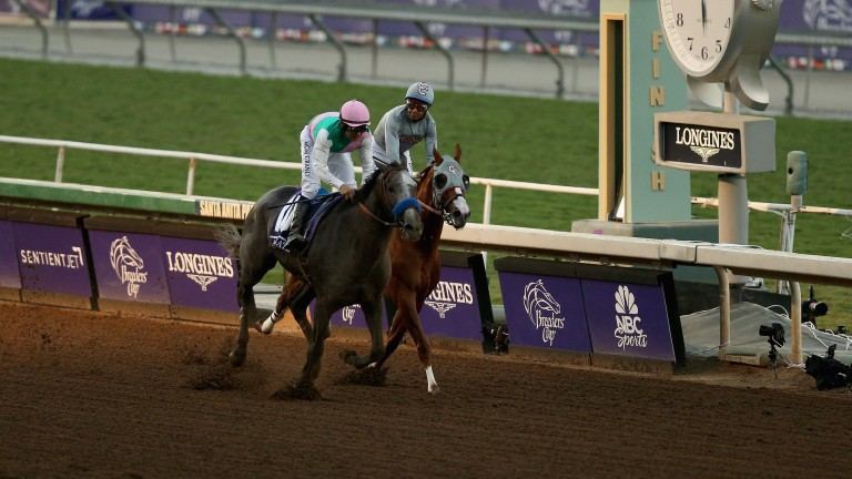 Arrogate (pink cap) denies California Chrome in the Breeders' Cup Classic