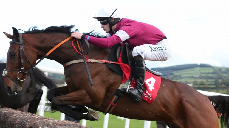 """Identity Thief: """"He's been in good form and has been working well"""""""