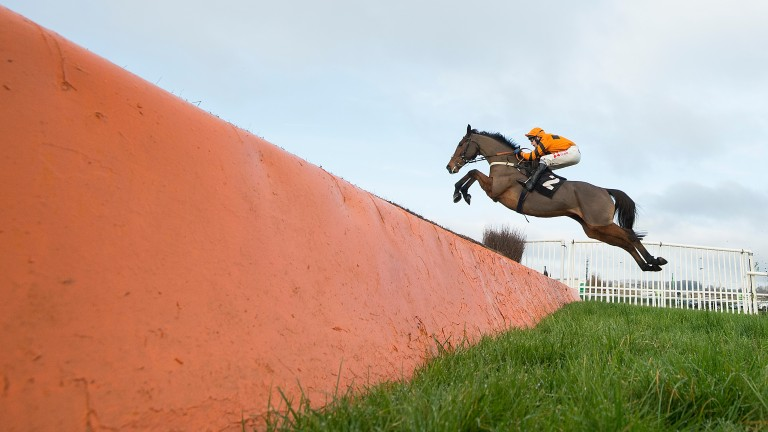 Thistlecrack: unbeaten novice chaser was bought for just €32,000 as a foal