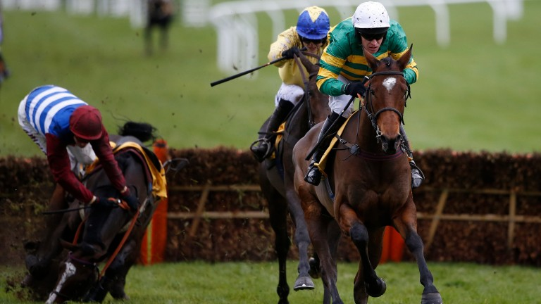 Defi Du Seuil and Barry Geraghty clear the last on the way to victory at Cheltenham in November as Dino Velvet, who reopposes today, comes to grief