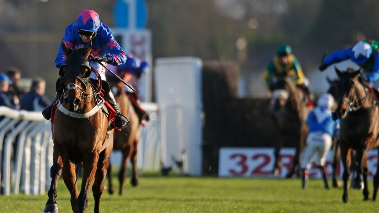 Royal Vacation: fancied for the RSA Chase