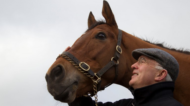 Foxrock and trainer Ted Walsh: successful start in new sphere