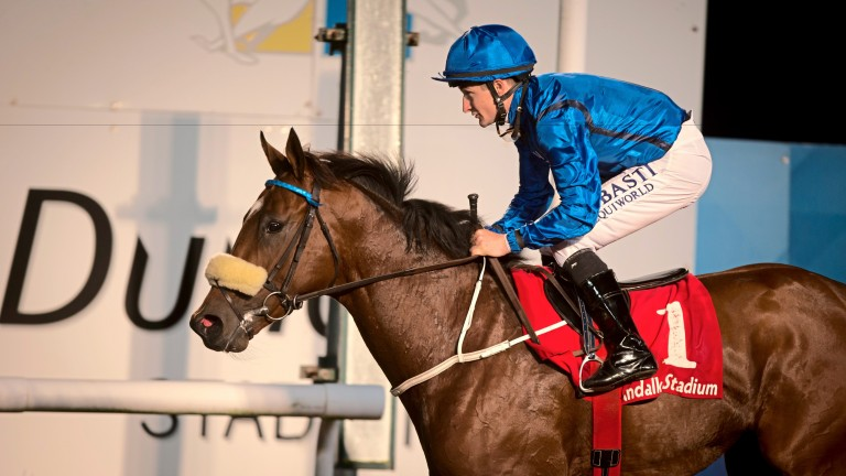 The exciting Ambassadorial lands the Star Appeal Stakes at Dundalk