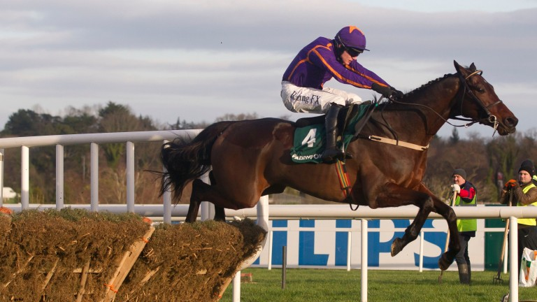 Saturnas clears the final flight in the Future Champions Novice Hurdle