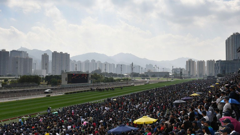Racing takes place at Sha Tin on Sunday